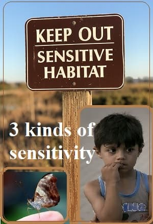 3 photos: a sign saying 'Sensitive Habitat,' a butterfly sitting delicately on a finger, & a sensitive, sad-looking boy