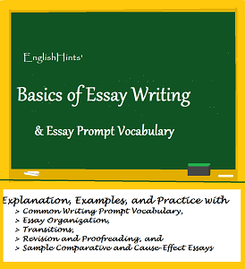 cover picture for the Basics of Essay Writing pdf.