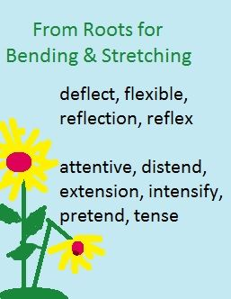 words from roots for bending and stretching, including deflect, flexible, reflection, attentive, distend, extension-- with an illustration of straignt and bent-over sunflowers.