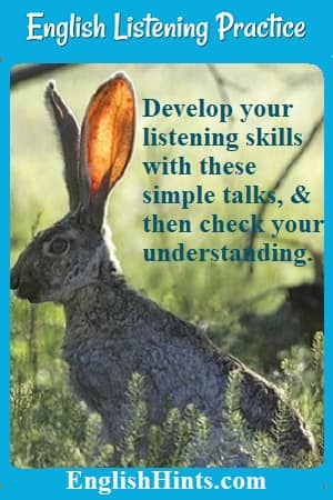 photo of a jackrabbit with large ears. 'Develop your listening skills with these simple talks, & then check your understanding.'