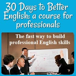People around a conference table looking at a man giving a presentation. Text: 'The fast way to build professional English skills.'