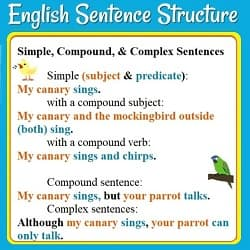 Examples of simple, compound, & complex sentences: 'My canary sings.' (etc.) 'My canary sings but your parrot talks.'(& picture of a parrot) 'Although my canary sings, your parrot can only talk.'