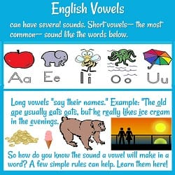 'English Vowels can have several sounds. Short vowels... sound like...' A (with an apple), E (& an elephant), I (insect), O (octopus) & U (umbrella.) Then text & pictures for long vowels.