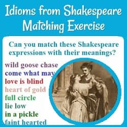 Picture of Romeo & Juliet. 'Can you match these Shakespeare expressions with their meanings? wild goose chase, come what may, love is blind, heart of gold, full circle, in a pickle,' etc.