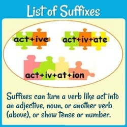 Puzzle pieces linked together to show 'active,' 'activate,' & 'activation.' Text: 'Suffixes can turn a verb like act into an adjective, noun, or another verb (above) or show tense or number.'
