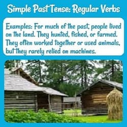 Present Tense Verbs: Examples and Practice