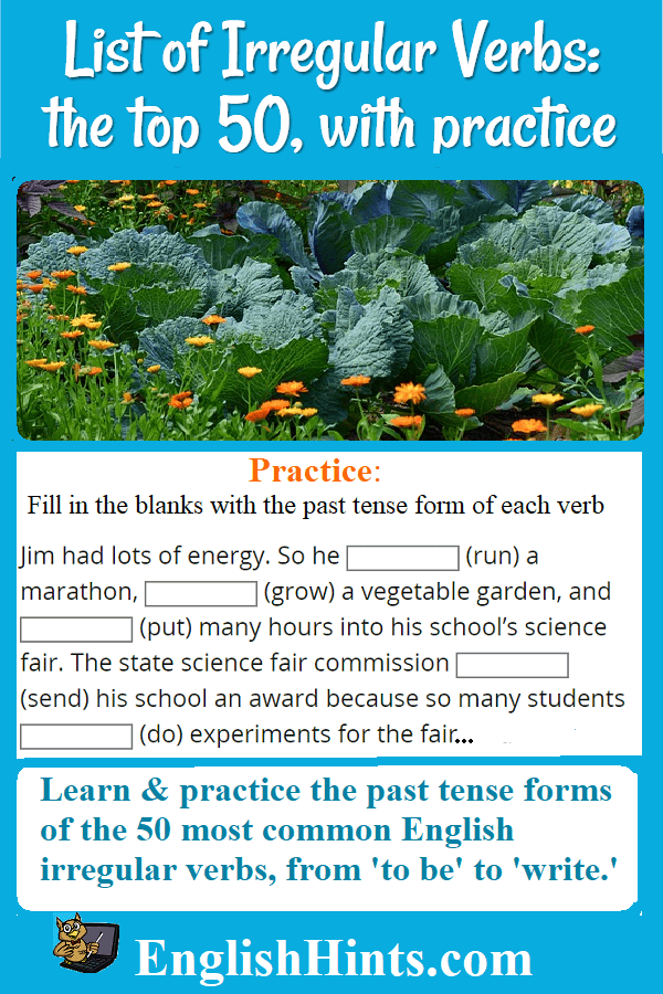 picture of a vegetable garden, with fill-in practice for several verbs including grow (