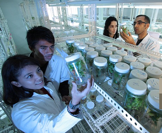 researchers in lab coats inspecting jars