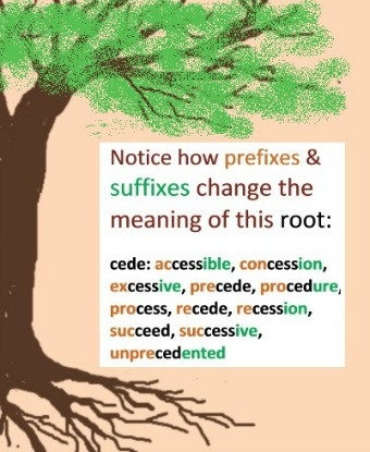 tree with roots and example of a root word with prefixes and suffixes.